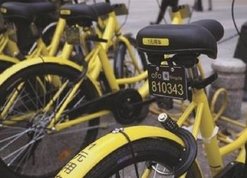 Ofo Bikes bike-sharing bikes lined up along a street
